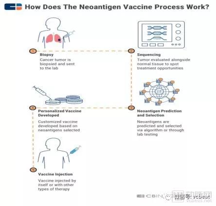癌症治疗的重大突破_为什么新抗原疫苗可能成为下一个重大的癌症免疫治疗突破口 ...